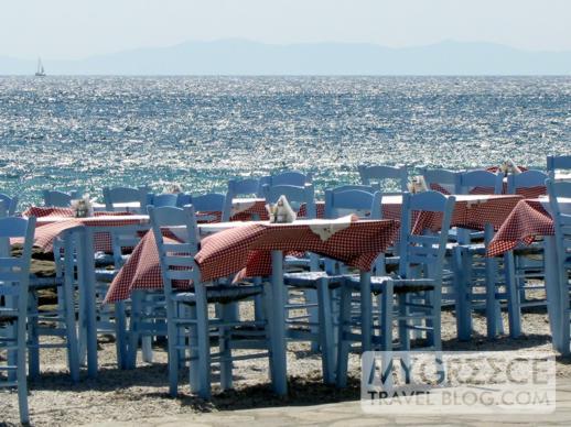 Babulas Taverna at Mykonos Town
