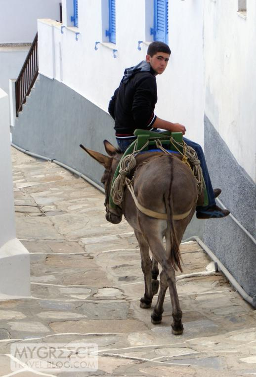 boy riding a donkey on Sifnos