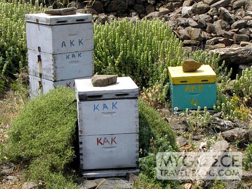 bee hives on Astipalea