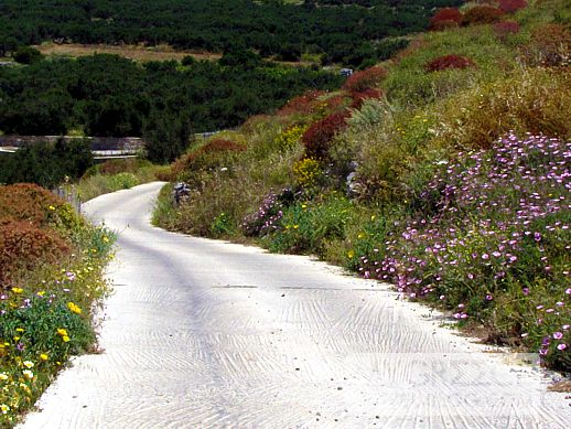 road from Egali to Langkada
