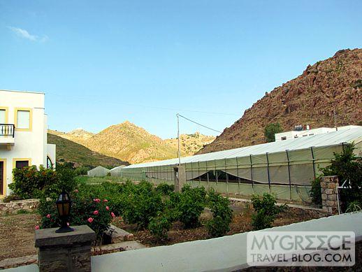 Ktima Petra greenhouses