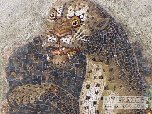panther mosaic in the Delos archaeological museum