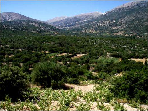 a valley near Valsamata on Kefalonia
