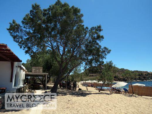 Nikolas taverna at Agia Anna beach Mykonos