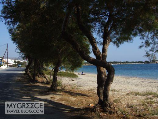 Agia Anna Naxos