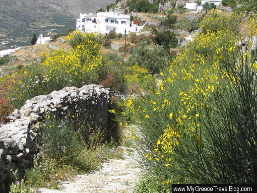 footpath in Upper Potamos