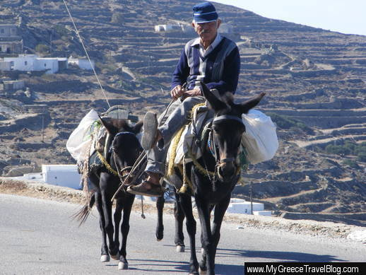 donkeys on Folegandros