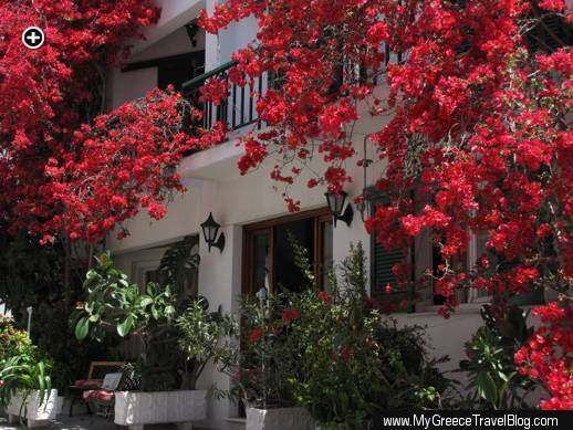 Bold red bougainvillea cascades above the entrance to Hotel Helen in Vathi (Samos Town) on Samos