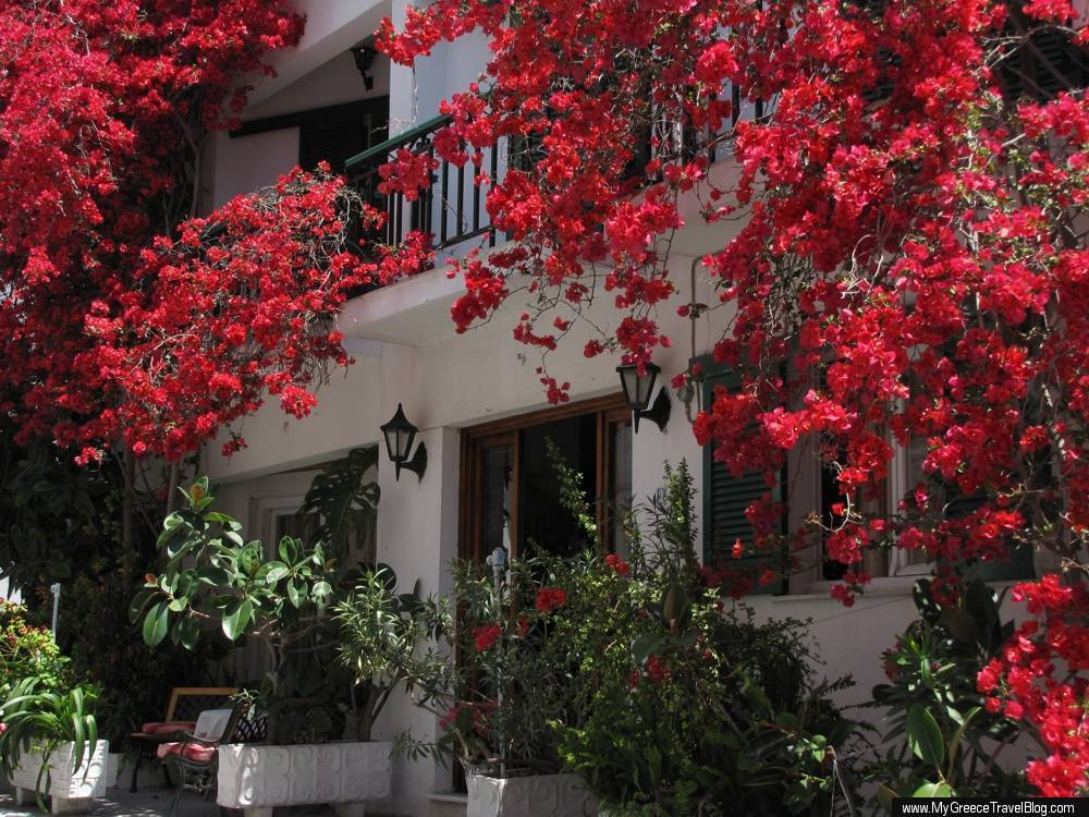Hotel Helen on Samos
