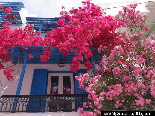 Studios Panos in Naxos Town