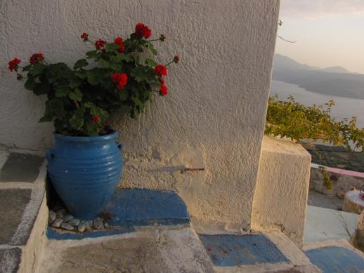 geraniums on Milos