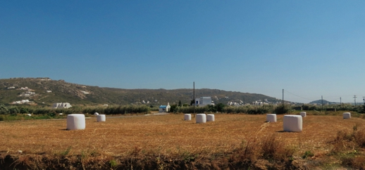farm fields on Naxos