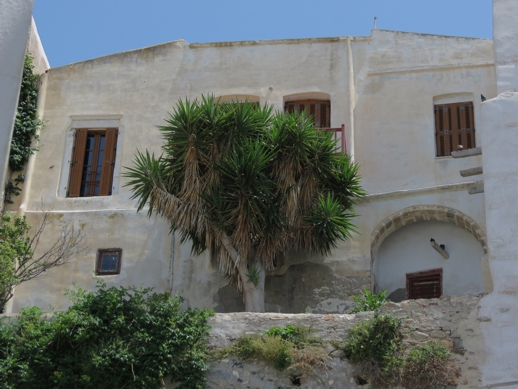 palm tree at the Naxos Castle