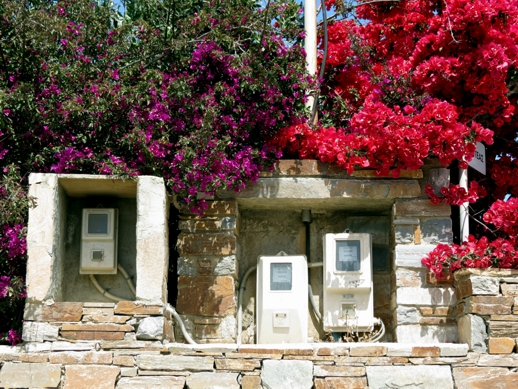 bougainvillea on Naxos