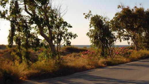 highway on Naxos
