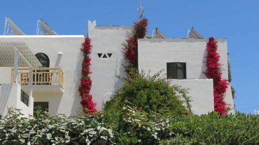 Hotel Proteas on Naxos