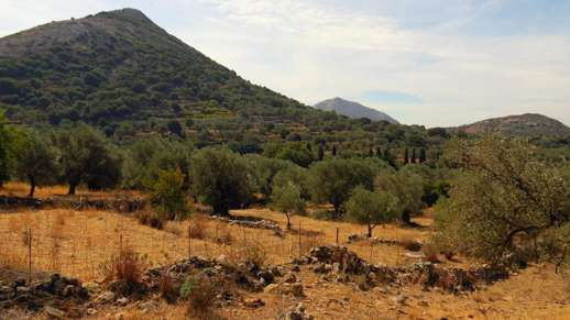 hillside near Filoti