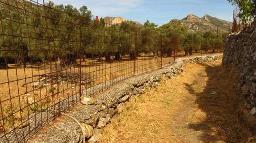 a footpath near Chalki