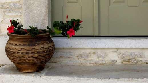 a flowerpot in Chalki