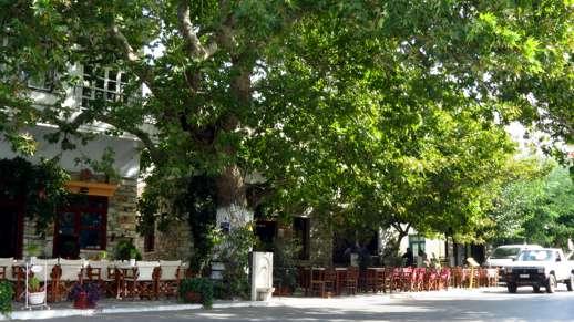 cafes in Filoti