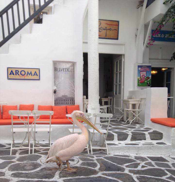 Aroma Bar Mykonos