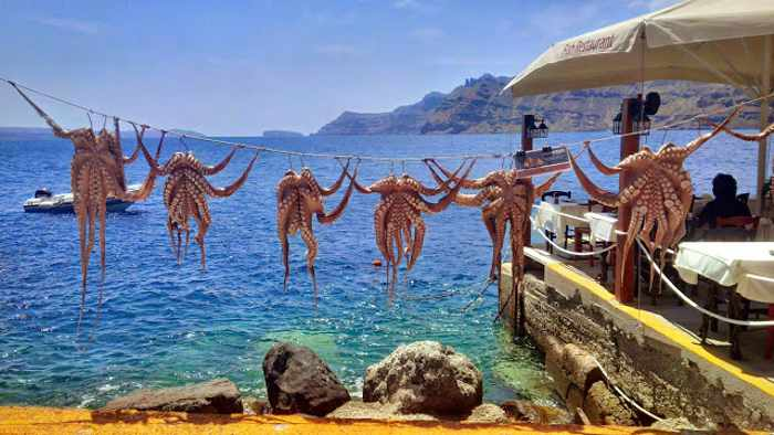 Octopus at Amoudi Bay Santorini image by Christine from Vancouver blog IMG_20150511_130719_hdr
