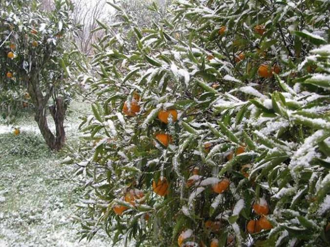 Snow at Halki village Naxos