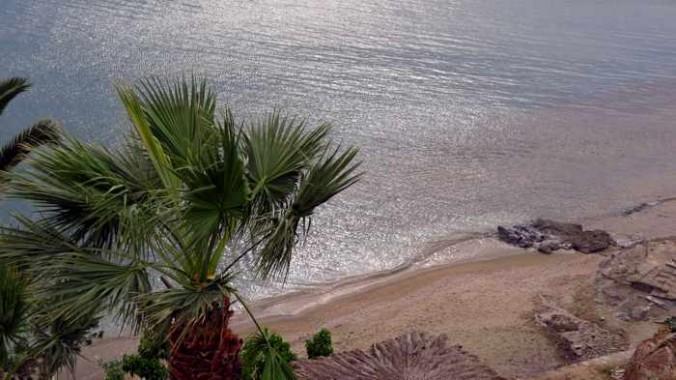Delavoyia beach view from our veranda