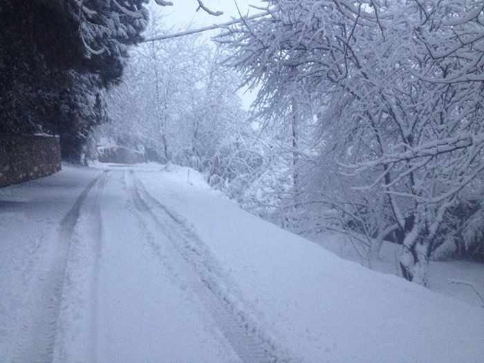 Snow on Skiathos photo shared on Facebook by Giorgos Diolettas