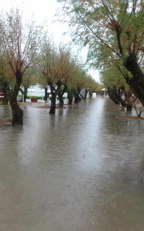 Vasso Giokarini-Sofouli photo 02 of storm scene at Potokaki on Samos