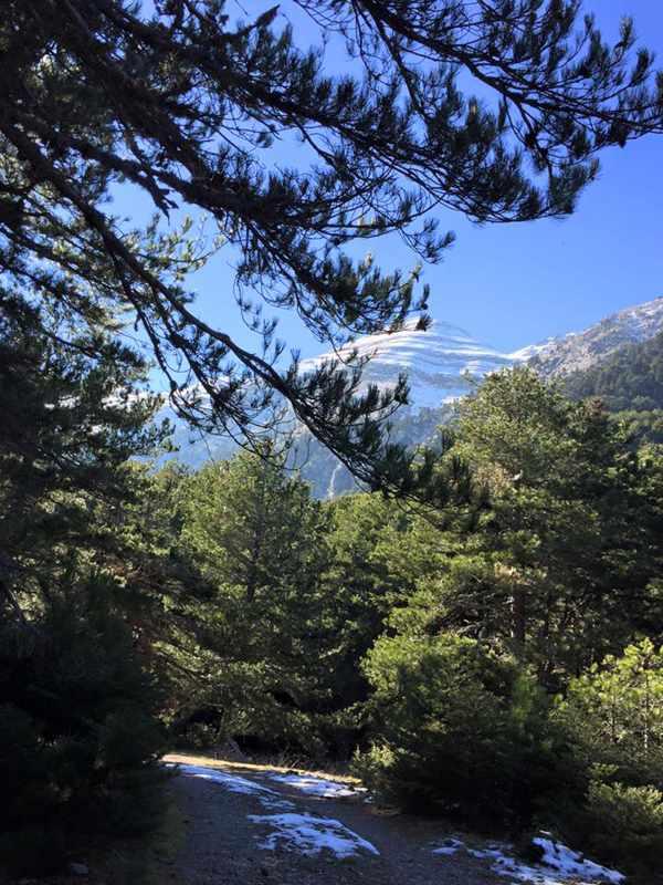 Mount Taygetos, Profitis Ilias, near Toriza, Lakonia