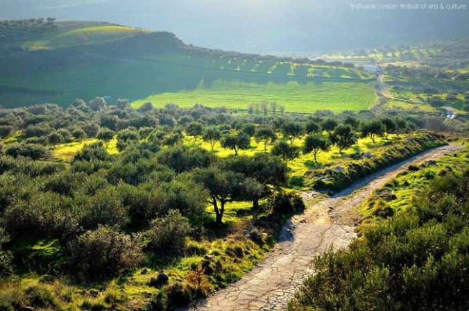 Festivalaki photo of a lush green valley on Crete