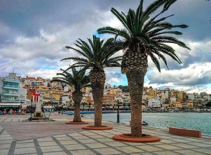 palm promenade at Sitia Crete
