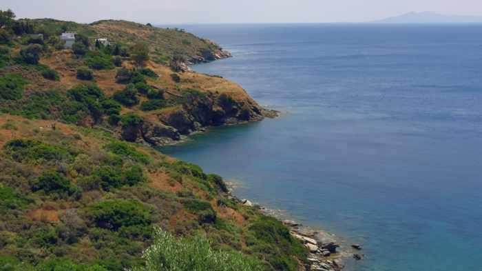 Andros coast near Batsi
