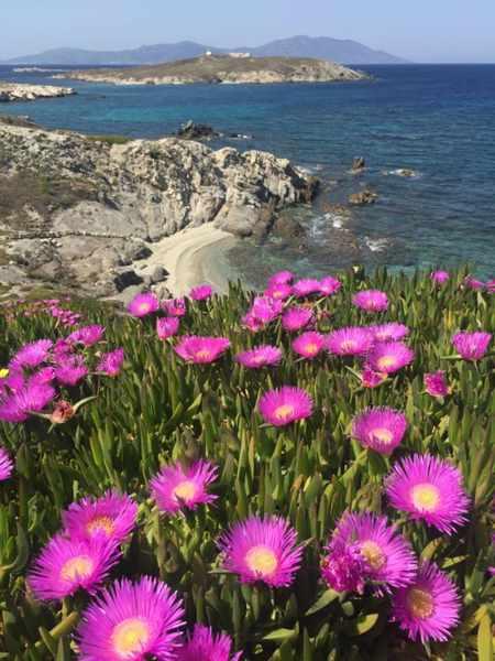 View from Mykonos to Bao island