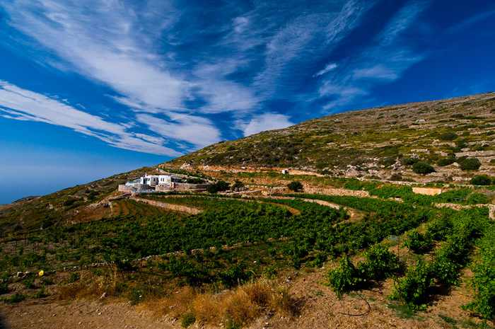 Manalis Winery Sikinos Greece