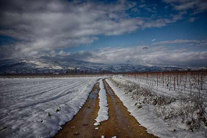 snow in Nemea wine region of Greece