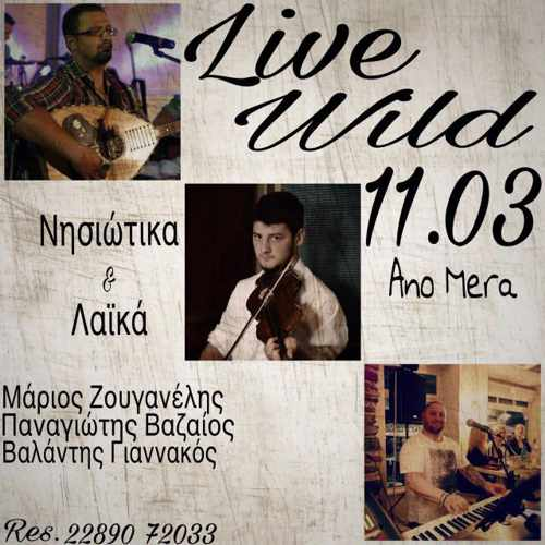 Wild CAfe-Bar Mykonos live music event