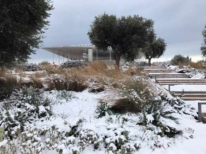Snow at the Stavros Niarchos Foundation Cultural Centre in Athens