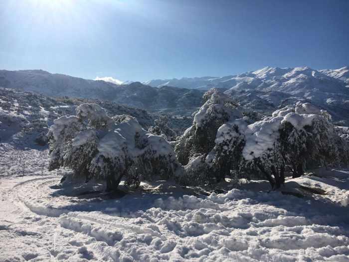 Snowy countryside near Chania Crete