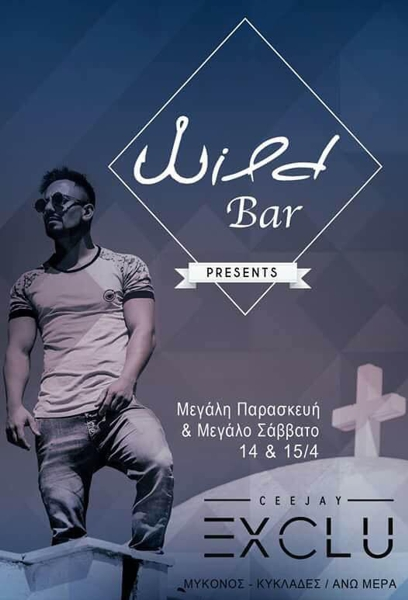 Wild Bar Mykonos party event