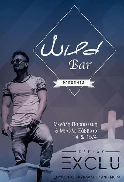 Wild Bar Mykonos party event