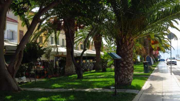 palm trees along Boumpoulinas Street Nafplio