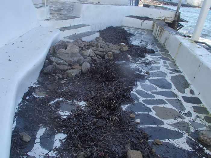 Little Venice storm damage