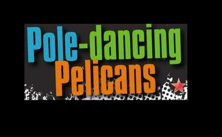 Pole Dancing Pelicans band
