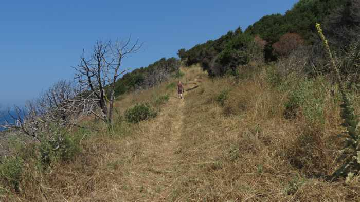 Trail to the Navarino Castle