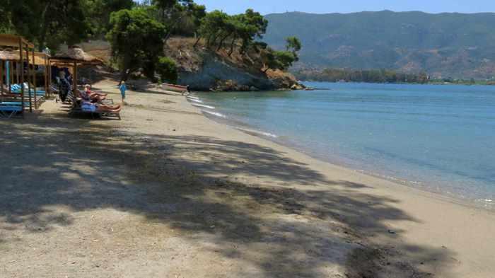 Greece, Greek island, Saronic island, Poros, Poros Greece, Poros island, beach, shore, sand, sea, coast, Calypso beach Poros, Megalo Neorio beach Poros,