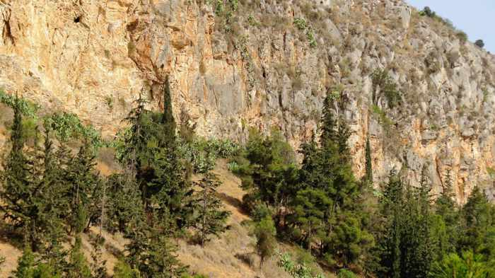 Greece, Peloponnese, Nafplio, mountain, cliffs, trees, Palamidi mountain, mountain,