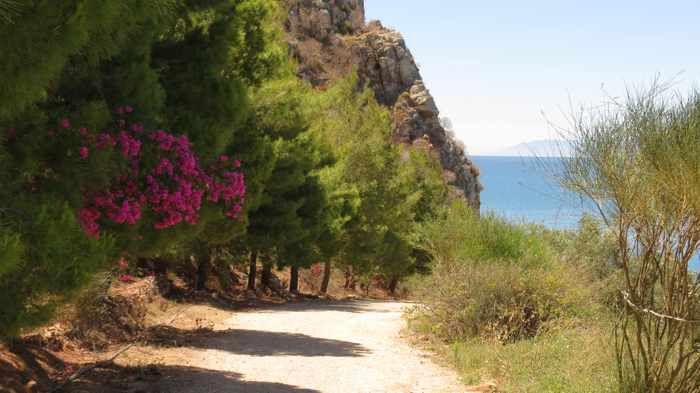 Greece, Peloponnese, Nafplio, Karathona, Karathona path, path, walkway, footpath, trail, trees,
