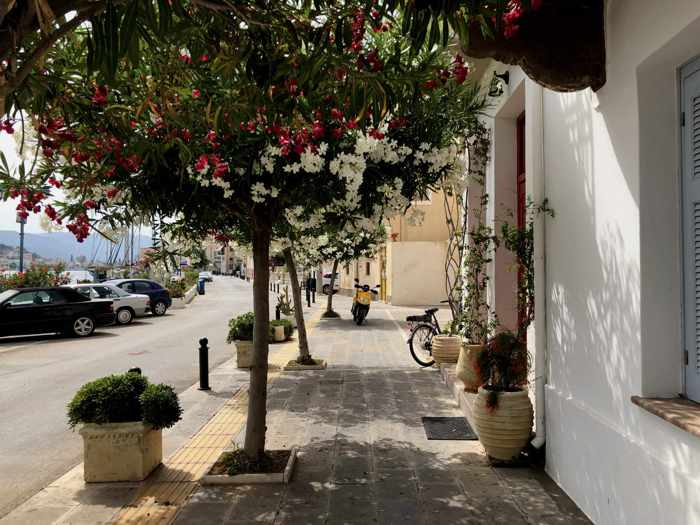Greece, Greek island, Saronic island, Poros, Poros Greece, Poros island, street, road, tree,